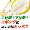 【エギング初心者の疑問】上げ潮と下げ潮、アオリイカが釣れるのはどっち?